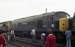 Class 44 - 44007 (The_Anorak) Tags: blue june yard br peak rail depot british 9th railways 1979 nottinghamshire sulzer ingleborough tmd brel diesellocomotive toton type4 class44 44007 openday1979