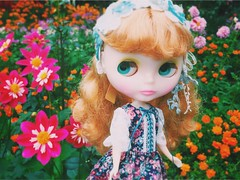 Amazing #colors (and crowd 😵!!!) at #GardensByTheBay 🌸🌼🌺❤️😍🌻🌹🌼🌺 #love #blythe #doll #ブライス #vscocam #Rosalynnperle #ロザリンペルレ