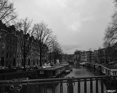 DSC_1687-imp (eeya eeya) Tags: blackandwhite bw amsterdam canal blackwhite gracht floatinghouse woonboot woonark