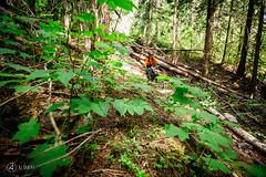 pemberton-enduro-ajbarlas-300416-4081.jpg (a r d o r) Tags: mtb pemberton mountainbikes mtbrace enduroracing ajbarlas ardorphotography pembertonenduro