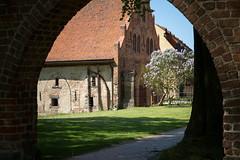1X4A7195 (Andreas Kobs) Tags: sonne brandenburg kloster backstein lehnin
