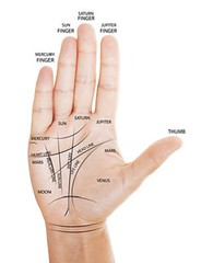 Woman hand with palm reading map. (Voyanteamour) Tags: life man sign mystery reading hand open arm symbol tell map five finger live object palm line human fate future planet knowledge planetary spiritual psychic astrology mystic palmistry astrologer russianfederation palmist hiromancy