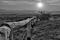 Barrier (kalbasz) Tags: sunset blackandwhite white black nature hungary outdoor barrier