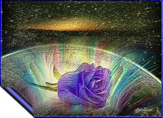 Empatia (Poetyca) Tags: featured image sfumature poetiche poesia