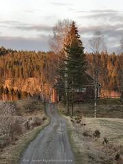 20160426092974 (koppomcolors) Tags: sweden sverige vrmland koppomcolors