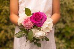 Flores de mi jardin (Nathalie Le Bris) Tags: pink flower fleur rose child flor rosa enfant nio