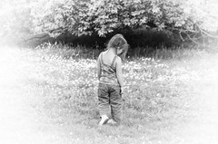 Cobham Manor Park (stmoritz1960) Tags: park kent jasmine cobham manor stmoritz1960 stmoritzphotography