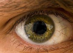 It's just a selfie (svenru89) Tags: selfie eye eyes green white head macro canon sharp bodypart human men selbstportrait auge augen grn weis schwarz reflektion kopf makro makroobjektiv 60mm f28 canon7d scharf schrfe krpterteil mensch mann reflection