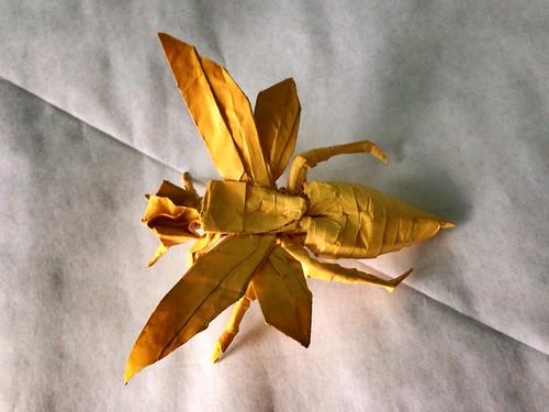 Flickriver Origami E Arte Brasil Pool