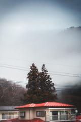 La Brume (www.danbouteiller.com) Tags: japan japon japanese japonais nasu tochigi house fog tree arbre brouillard brume gloom gloomy mountain canon canon5d eos 5dmk2 5d 50mm 5 50mm14 5d2 5dm2