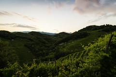 Prosecco's hills (Christian Bettin) Tags: sunset sky italy green iso100 nikon italia hill hills di marca 16 tamron 15mm treviso farra prosecco veneto f13 d610 soligo