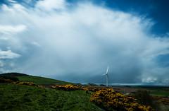 Wind turbine (gallowaydavid) Tags: clouds turbine windturbine gorse mossmorran