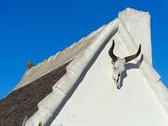 Les Saintes-Maries-de-la-Mer (Charles.Louis) Tags: architecture paca provence tradition maison toit toiture camargue patrimoine habitation lessaintesmariesdelamer chaume chaumire bourrine
