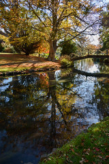 Bridges and Trees (Jocey K) Tags: bridge autumn trees newzealand christchurch sky plants reflections river shadows may avon monavale avonriver dappledlight