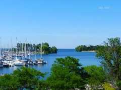 """Success is getting what you want. Happiness is wanting what you get."" - W.P. Kinsella (Trinimusic2008 -blessings) Tags: trees summer toronto ontario canada nature water june marina to sailboats lakeontario today 2016 trinimusic2008 judymeikle"
