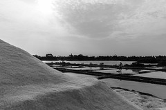 Process & Result | Marakkanam Salt pans,Tamilnadu. (vjisin) Tags: blackandwhite sun india reflection water monochrome field composition work workers nikon asia factory upsidedown action outdoor ngc salt hard production minimalism process job making tamilnadu pans cwc nikond3200 marakkanam uppalam chennaiweekendclickers nikonofficial cwc533