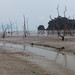 Desolate beach panorama
