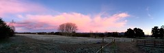 morning sky. (treeee) Tags: newzealand southisland landscape morningsky pink pinkclouds