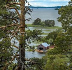 Deep Breath (Jyrki Salmi) Tags: finland nikon nikkor jyrki archipelago d600 salmi 3580mm pyht