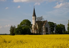 White church in yellow field wide view (Michael Tracy's photos) Tags: poland nyas