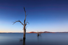 Night Trees (Tim Donnelly (TimboDon)) Tags: trees lake sunrise canon australia nsw hitech manfrotto snowymountains adaminaby waterscape eucumbene lakeeucumbene treesubject snowyregion