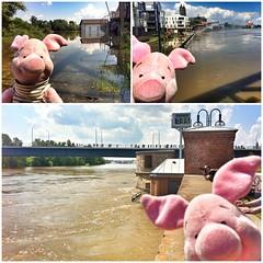 08.06.2013: Soviel zur Lage am Mückenwirt, an der Hubbrücke & an der Pegelanzeige in Magdeburg (zwischen 11:45 und 13:00 Uhr).