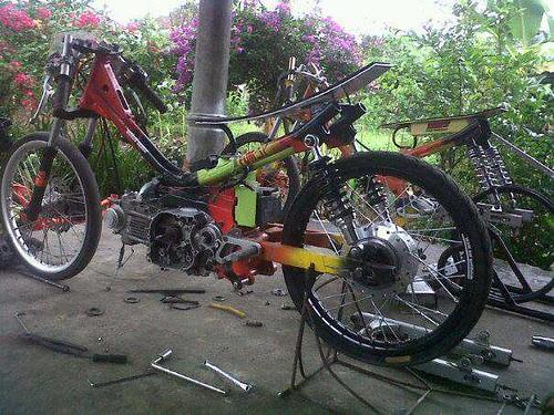 Vega 115 cc FDM-SP