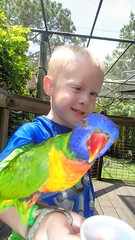 OLYMPUS DIGITAL CAMERA (drjeeeol) Tags: birds zoo will fav triplets fathersday toddlers 2013 fathersday2013 57monthsold