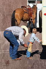 Bucklin Up by Scott Gutke (SGutke) Tags: scott chaps horsetrailer littlecowboy scottgutke gutke saddledhorse