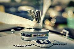 Wedding Bells (Steve.T.) Tags: wedding silver classiccar bokeh ribbon bentley maldon weddingribbons weddingcar luxurycar ommot ommotimagery bentleybonnetmascot maldoncarshow2013