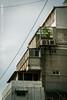 東區 Eastern District of Taipei / Taipei, Taiwan (yameme) Tags: canon eos taiwan taipei 台灣 東區 台北市 街拍 streetsnap 135mml 5d3 5dmarkiii