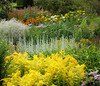 An English Country Garden (Messent) Tags: pictures flowers england english gardens poetry haiku border oxfordshire albion herbaceous landscapedetail poetryandpicturesinternational waterperrygardens poetryforall