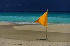 Yellow flag on the bea