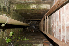 The Abyss (Stephen Whittaker) Tags: park detail building abandoned architecture liverpool hospital nikon exploring orphanage explore sanatorium derelict institution newsham seamens seamans d5100 whitto27