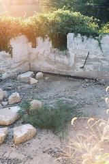 (Lesley Rivera) Tags: light house canon basement baltimore foundation leak demolished finds vsco