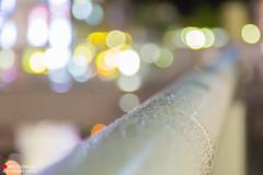 Soft Rain (Masahiko Futami) Tags: city abstract reflection water rain japan night canon waterdrop asia photographer          bokehlicious eos5dmarkiii