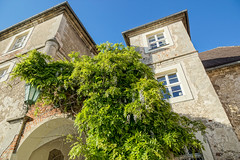 Wasserschloss_Mellenthin-20130523-173157-i020-p0036-SLT-A77V-16_mm-.jpg