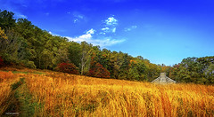 Color of falls (Jas Bassi) Tags: statepark park beautiful nikon falls jas beautifulsky warmcolors jassi willowgrove outdoorphotography nikon2470mm fallscolor jasbassi nikond800e jasbassiphotography vision:beach=051 vision:mountain=0811
