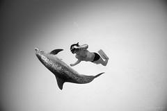 Рекорд Натальи Молчановой 182 метра под водой DNF
