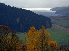 Loch Tay Scotland (jfoucheux) Tags: scotland highlands perthshire aberfeldy lochtay