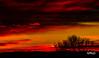 Sólsetur/Sunset (icecold46) Tags: sunset red silhouette yellow iceland rautt gult sólarlag borgarfjörður