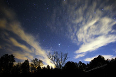 Thanksgiving Night Northport AL (Banjo Mike) Tags: Astrometrydotnet:status=solved Astrometrydotnet:id=nova160297