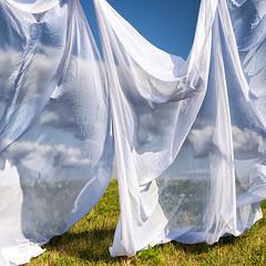 """Summer Breeze"" (helmet13) Tags: sky clouds raw curtain meadow simplicity studies aoi summerwind 100faves peaceaward d700 heartaward world100f bestcapturesaoi"