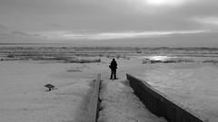 Uninviting (Bert CR) Tags: winter snow cold saublebeach icecold uninviting snowandice