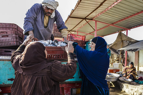 A man and a woman selling fish at the market in Fayoum before it was upgraded, Egypt. Photo by Heba Al Begawi/WorldFish, 2014.