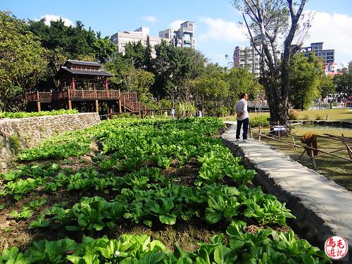 景福河濱自行車步道、客家文化館 (25).jpg