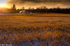 Soybean Farm Sunset (birdiebob) Tags: sunset snow field farm soybean daarklands sailsevenseas