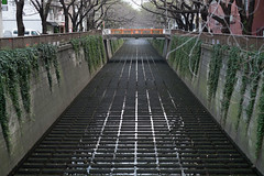 Meguro River (veropie) Tags: travel japan tokyo asia fuji traveller fujifilm nippon traveling meguro nakameguro eastasia meguroriver notatourist kantō