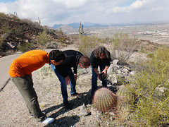 """Camilo, Jim and Betsy looking at a cactus (Tucson, 2013) • <a style=""""font-size:0.8em;"""" href=""""http://www.flickr.com/photos/32690690@N08/12613217255/"""" target=""""_blank"""">View on Flickr</a>"""