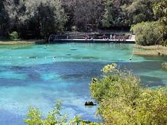 Rainbow Springs State Park Florida (Darryl Kenyon) Tags: park swim fun rainbow kayak state florida olympus canoe springs splash kenyon darryl e520
